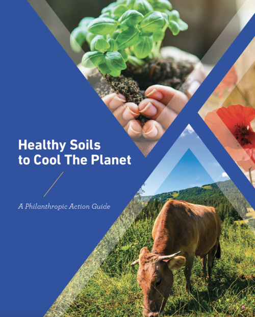 Healthy Soils Action Guide