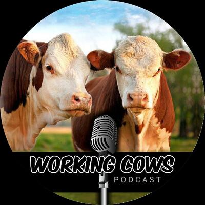 Working_Cows_Podcast_Logo_Square_Black