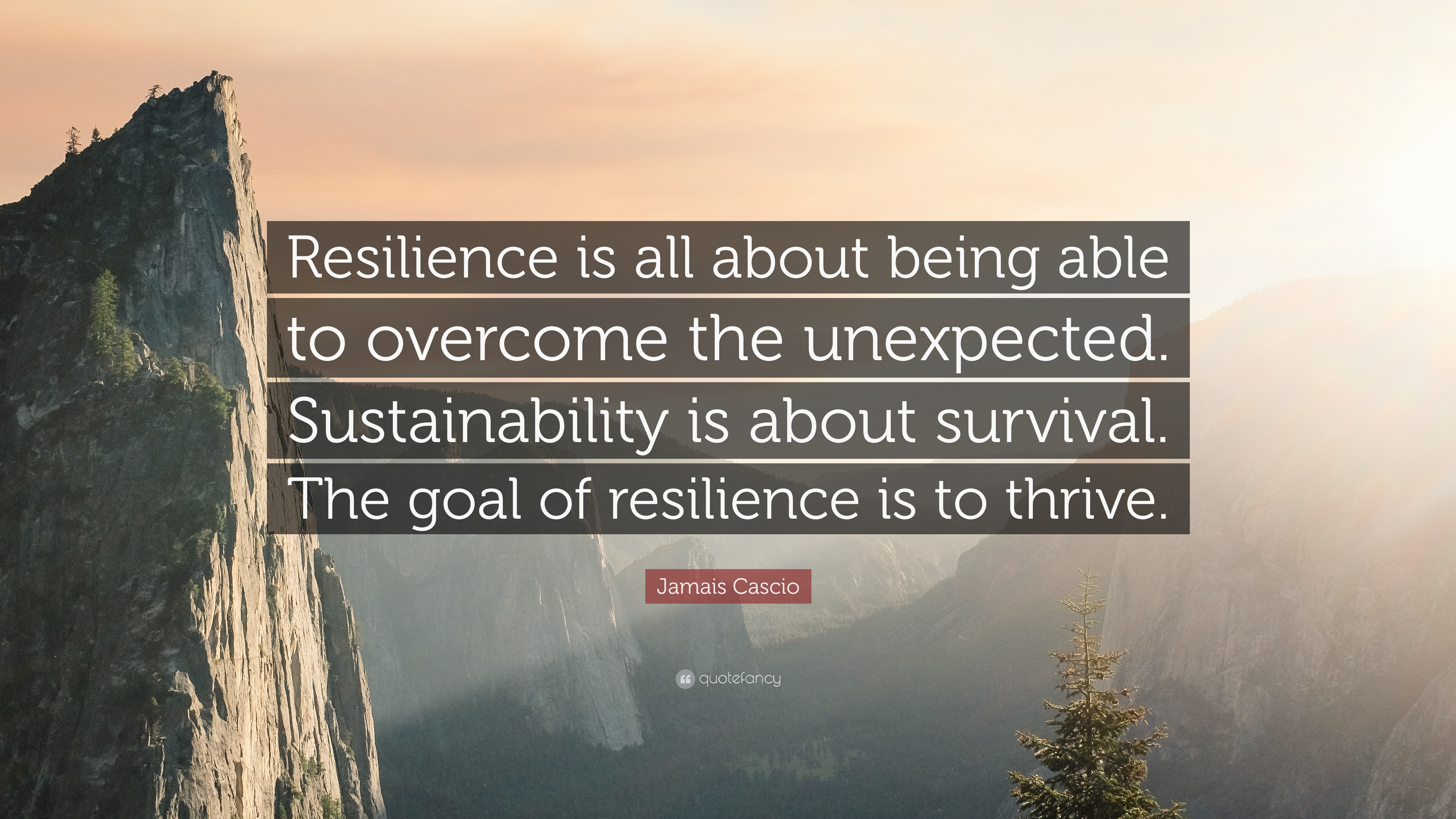 1248904-Jamais-Cascio-Quote-Resilience-is-all-about-being-able-to-overcome